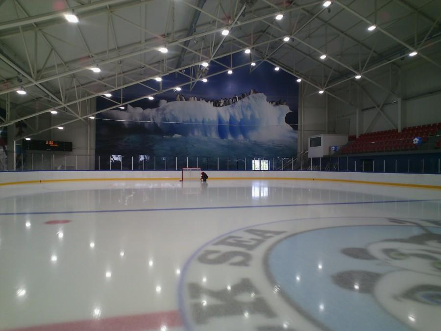 Картинки ледовых катков